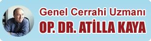 Doktor Atilla Kaya